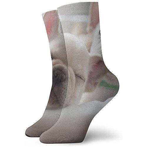 Just Born Baby Hund Söckchen Lässige gemütliche Crew Socken für Männer, Frauen, Kinder
