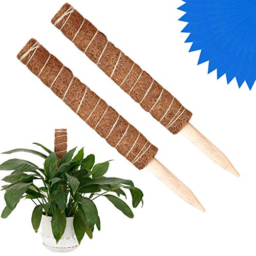 Xinstroe 2PCS Coir Totem Pole Plant Climbing Coir Moss Totem Pile Stützpfähle mit 20 Stück Garden Cable Ties und Tags für Creepers Climbing Plants