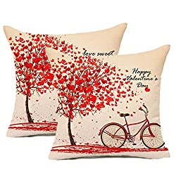 Happy Valentine's Day decorations pillows.