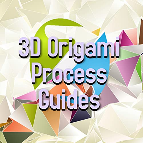 3D Origami Process Guides (English Edition)