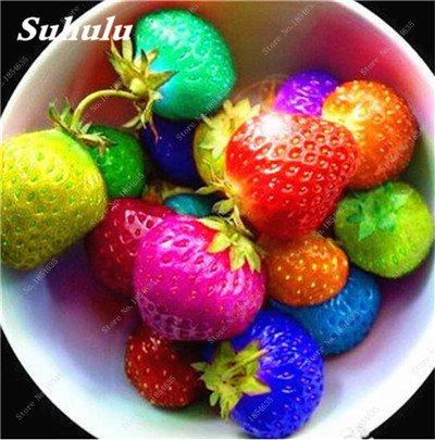 Big Promotion! 1000 Pcs Four Seasons en pot Graines Strawberry Super Sweet Seeds fruits Bonsai plantes Semences Maison et Jardin 24