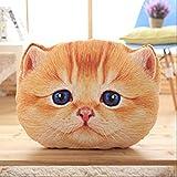 hokkk 40 / 50cm Fold Cat Plush Pillow Animales Completamente Rellenos Cat Pillow Decor Sofá Silla Kitten Pillow Kids Cot Throw Pillow 40cm D
