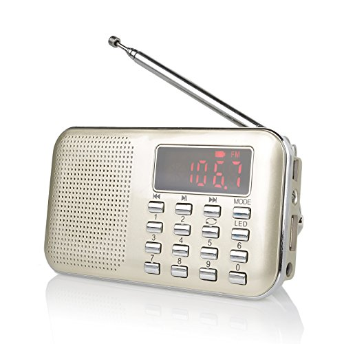 Raddy RF23 tragbar Radio Klein AM/FM Kurzwellenempfänger MP3 Musik Player, unterstützt Mikro USB TF Karte, mit LCD-Anzeige Wecker Externe Antenne und Chargeable Batterie (Gold)