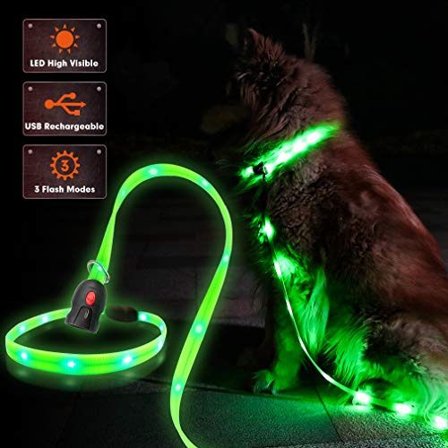 EXPAWLORER Rechargeable LED Dog Collar with Leash - Adjustable Size - USB Rechargeable Safety Waterproof Flashing Light for Night Walking - Color Green