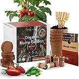 Indoor Salsa Garden Starter Kit - Certified USDA Organic Non GMO - 5 Seed Types San Marzano Tomato, Cherry Tomato, Jalapeño, Cilantro, Green Onion - Potting Soil, Peat Pots - DIY Kitchen Salsa