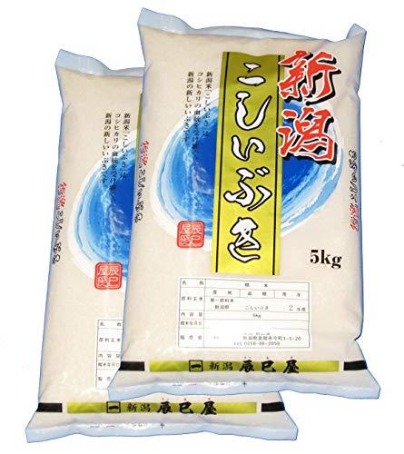 【精米】新潟県産こしいぶき 白米 10kg(5kg×2袋)令和2年産 新潟辰巳屋(産地直送米)