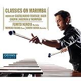 Violin Sonata No. 2 in A Minor, BWV 1003: III. Andante (arr. Fumito Nunoya for marimba)