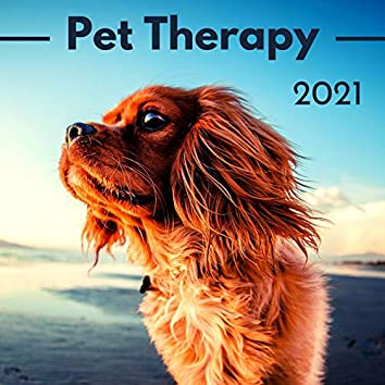 Pet Therapy 2021: Soothing for Dogs, Relaxing ASMR Music to Relax and Calm Your Dog