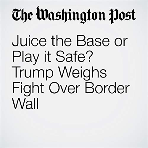 Juice the Base or Play it Safe? Trump Weighs Fight Over Border Wall copertina