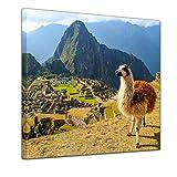 Bilderdepot24 Bild auf Leinwand   Alpaka am Machu Picchu
