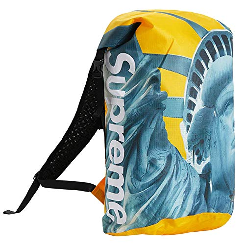 SUPREME × THE NORTH FACE 19FW Statue of Liberty Waterproof Backpack シュプリーム ザ・ノース フェイス バックパック リュックサック カバン バッグ イエロー 黄色