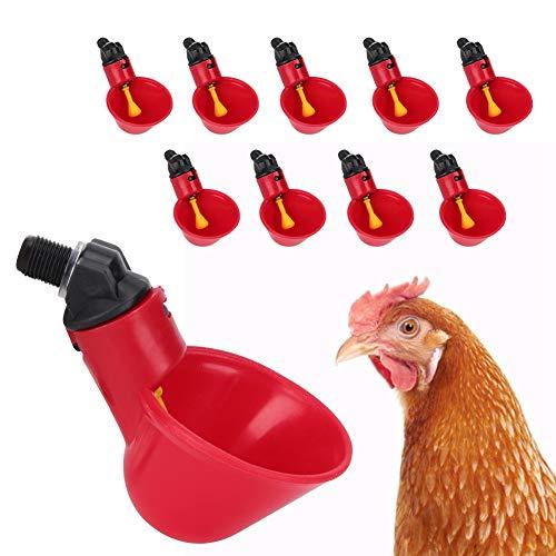 10 piezas de vasos automáticos para bebederos de pollo, bebedero automático para aves de corral, cuencos para beber agua, tazas para herramientas de agua, accesorios para jaulas para aves, codornices,
