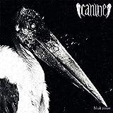 Bleak Vision [Vinyl LP] [VINYL] -  Canine