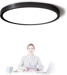 Best flush ceiling light fixtures modern Reviews