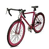 Fixie Bike Band Handle Alloy Urban Bike Flip Flop Hub City Bike 700C Road Bike (Purple, 27 inch)