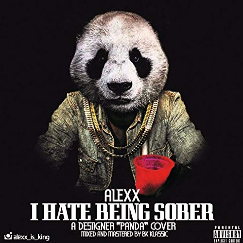 I Hate Being Sober [Explicit]