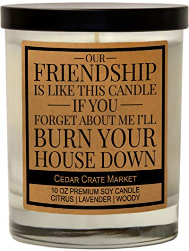 Our Friendship is Like This Candle, Best Friends, Friendship Gifts for Women, Birthday Gifts for Friends Female, Going Away Gifts, Funny Gifts for Bestie, BFF Lavender Scented Soy 10 oz. Funny Candle