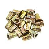uxcell 20 Pcs M8 Car Bronze Tone Carbon Steel Thread Half Hexagonal Rivet Nut Nutserts