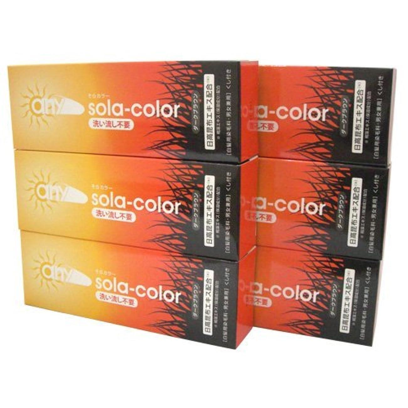 従うコロニーダーベビルのテスそらカラー (sola-color) 光ヘアクリーム 80g ダークブラウン x6個セット