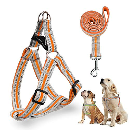 Reflective No Pull Dog Harness and Leash Set - Heavy Duty Basic Dog Halter Harness No Choking Or Pulling - Adjustable Step in Puppy Harness for Small Medium Large Dogs Outdoor Easy Walk Harness(L)