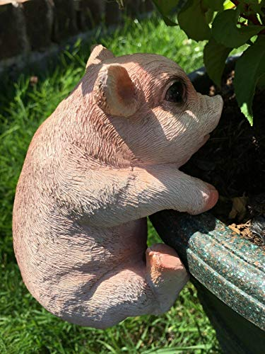 Hunky Dory Gifts Plant Pot Hanging Ornament Pig Animal Small Resin Garden Figure Sculpture Gift