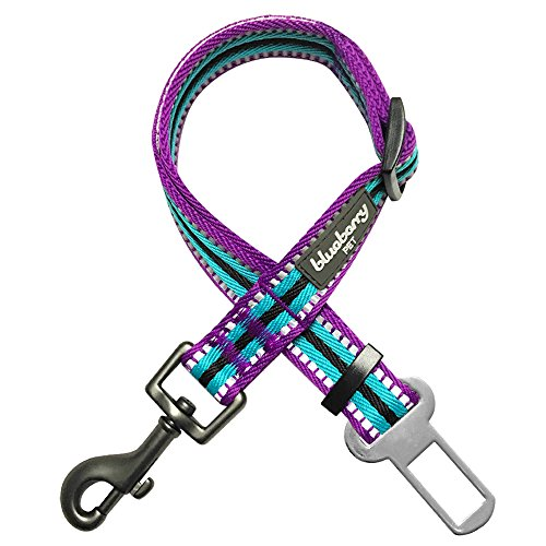 Blueberry Pet 8 Colors 3M Reflective Multi-Colored Stripe Adjustable Dog Seat Belt Tether for Dogs Cats, Violet and Celeste, Durable Safety Car Vehicle Seatbelts Leads Use with Harness