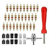 Johiux Reifen Reparaturset, 44 Stück Reifenventil Kern Werkzeug Set mit, Reifenreparatur-Werkzeug,1PCS Ventilkern Werkzeug,1 PCS 4 Wege Ventil Werkzeug, 12 PCS Reifenventilkappen, 30 PCS Ventilkern.