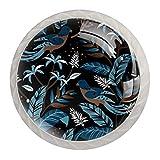 Pomos para armarios de cocina de 3,8 cm, diseño de pájaros, color oscuro, para armarios de cocina, bonitos tiradores redondos de cristal transparente (4 unidades)