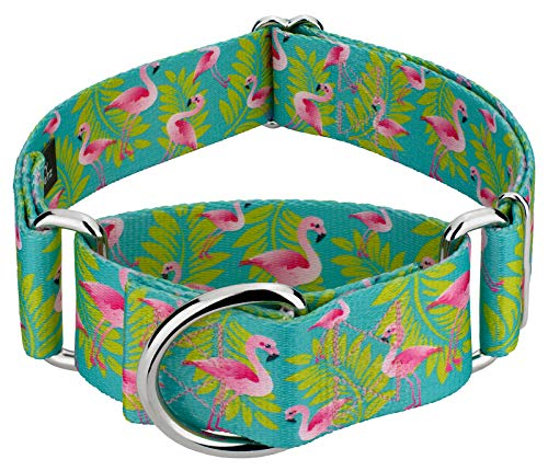Country Brook Petz - Flamingos Martingale Dog Collar - Animal Collection with 5 Wild Designs (1 1/2 Inch, Medium)