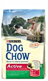 Pro Plan Chat Dog Chow Active pienso para Perros Adultos Pack de 3kg