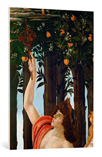 Kunst für Alle Cuadro en Lienzo: Sandro Botticelli La Primavera - Impresión artística, Lienzo en Bastidor, 70x100 cm