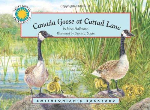 Canada Goose at Cattail Lane - a Smithsonian's Backyard Book (Mini book)