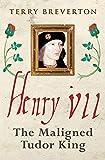 Henry VII: The Maligned Tudor King