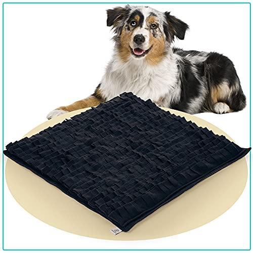 PEPPR the STRAY® Schnüffelteppich für Hunde 70x70cm | Hundespielzeug | Intelligenzspielzeug für Hunde | Fördert Intelligenz & Geruchssinn Deines Hundes | Suchteppich für große und kleine Hunde