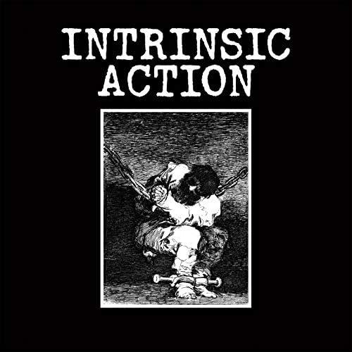 Intrinsic Action