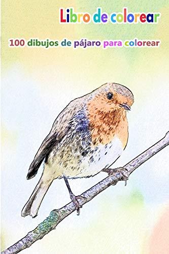 Libro de colorear 100 dibujos de pájaro para colorear: un buen libro de 6 x 9 pulgadas para pasatiempos, diversión, entretenimiento y coloración del ... adolescentes, adultos, hombres y mujeres