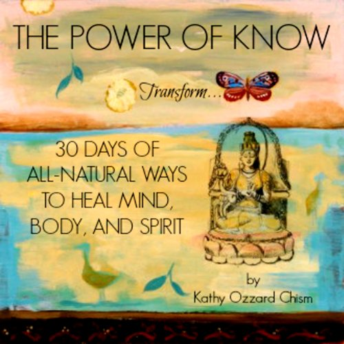 The Power of Know audiobook cover art