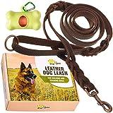 ADITYNA Laisse pour chien en cuir avec double poignée Poignée de trafic pour plus de contrôle Laisse en cuir souple et solide pour chiens de grande et moyenne taille