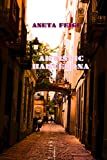 Artistic Barcelona: Art Guide (English Edition)