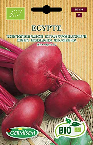 Germisem Orgánica Egypte Semillas de Remolacha 4 g