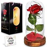 La Bella y la Bestia,la Bella y el Encantador kit de la Bestia Roja,Elegante Cúpula de Cristal con Luces LED de Base de Pino,Decoración de Regalo de Para la Boda de Aniversario del día de San Valentín
