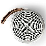 Tivoli Audio Andiamo Bluetooth Speaker in Silver