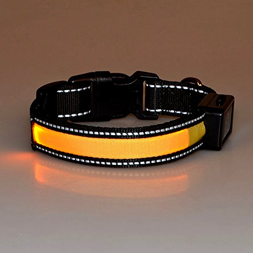 LaiXin LED Halsband Reflektierend, Hundehalsband Leuchtend Nylon Aufladbar Solaraufladung USB Wiederaufladbar Wasserdichte Halsbänder Verstellbar, Reflektierende Halsband Hund für Mittel Hunde - Gelb