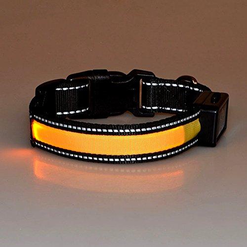 Laixin LED-halsband voor honden, met USB en zonne-halsband, oplaadbaar, waterdicht, knipperende veiligheidshalsband van nylon, LED-halsband voor honden, verstelbare grootte, halsband voor honden, wit, maat S, 30 cm ~ 40 cm, 7,5 kg ~ 15 kg, L:50cm~60cm(25kg~40kg), Giallo(Reflective)