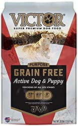 Victor-Dog-Food-Grain-Free-Active-Dog-and-Puppy-Beef-Meal-and-Sweet-Potato