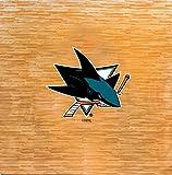 Coopersburg NHL 8-Foot by 8-Foot Fan Floor -