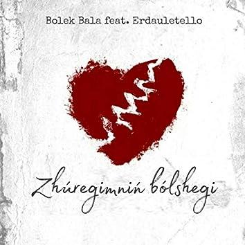 Júregimniń bólshegi (feat. Erdaulettelo)