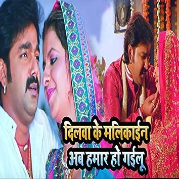 Dilwa Ke Malikain Ab Hamar Ho Gailu - Single