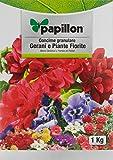 PAPILLON Abono Grano Geranios y Flores 1 Kg
