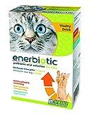 PETFORMANCE BENESSERE PER CANI E GATTI Vitality Drink-Bevanda Energizzante Prebiotica (6 Buste Monodose da 60Ml) - 1 Scatola